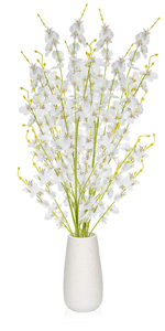 white flowers with vase