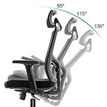 Adjustable Lumbar Support