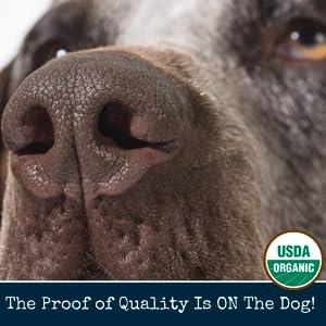 paw balm dogs natural mushers wax dog paws paw protection dogs winter dog paw balm healing paw wax