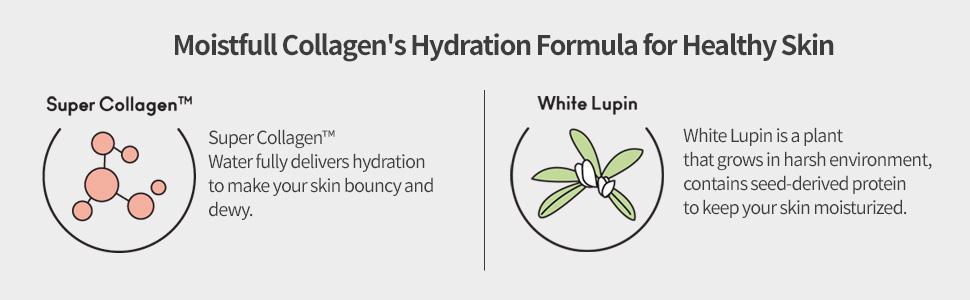 Moistfull Collagen's Hydration Formula for Healthy Skin