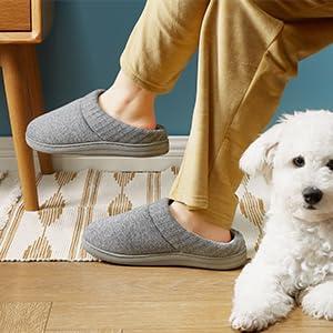 slipper and dog