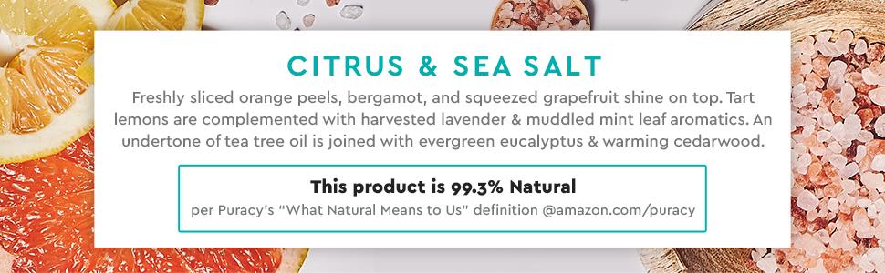 Puracy Natural Body Wash - Citrus & Sea Salt, 99.3% Natural