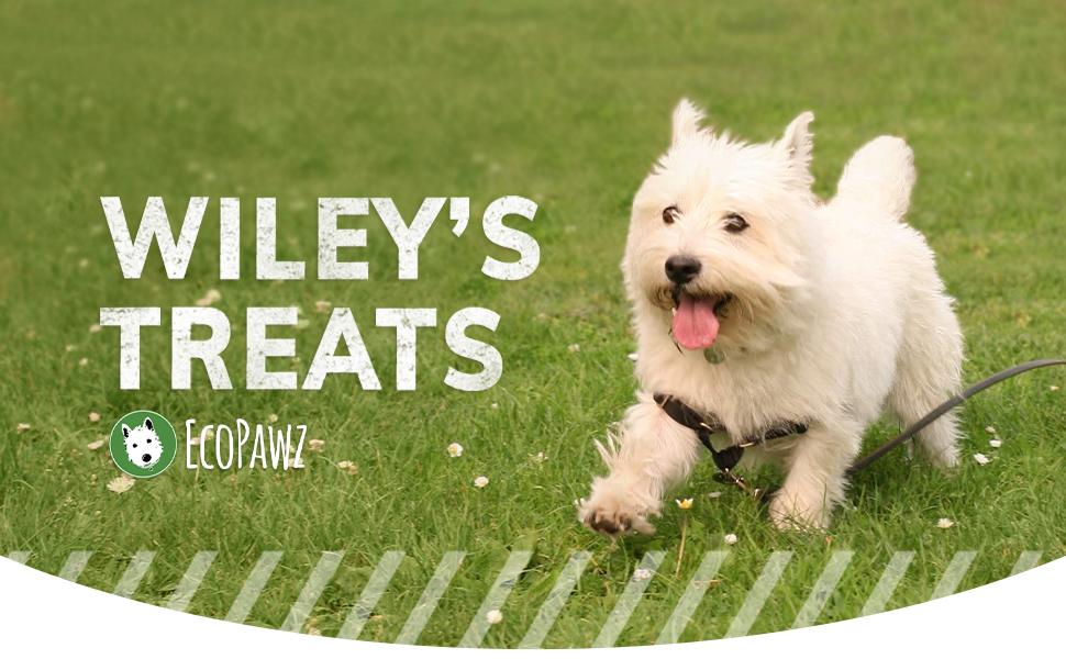 EcoPawz, Wiley's Treats, Dog Treats, Healthy