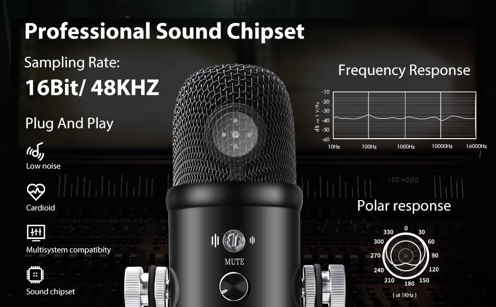 Proifessional sound