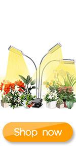 grow light for plant