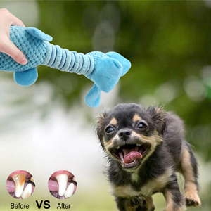 Great Teeth Cleaning Toy