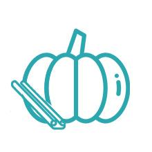 WonderSlim Pumpkin Aspartame Free Meal Replacement Shake