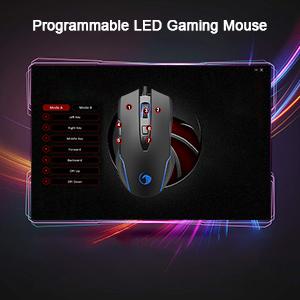 program mouse