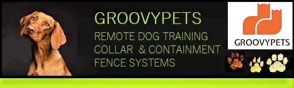 Remote dog trainer and fence systems