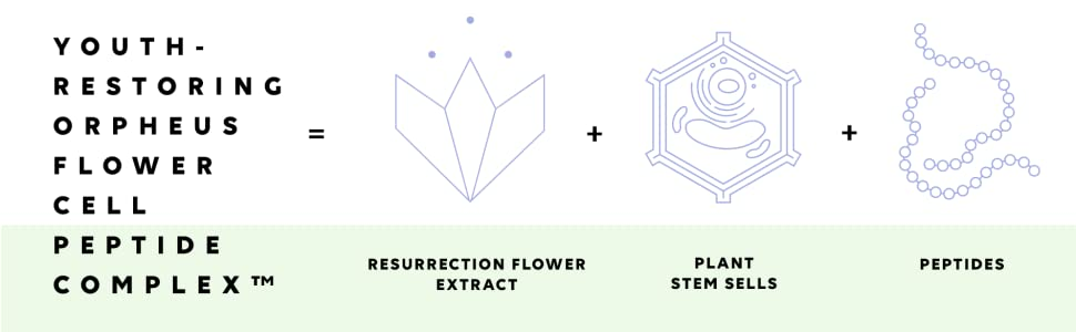 ORPHEUS FLOWER CELL PEPTIDE COMPLEX RARE RESURRECTION FLOWER BIOTECHNOLOGY STEM CELLS