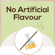 No Artigicial Flavour