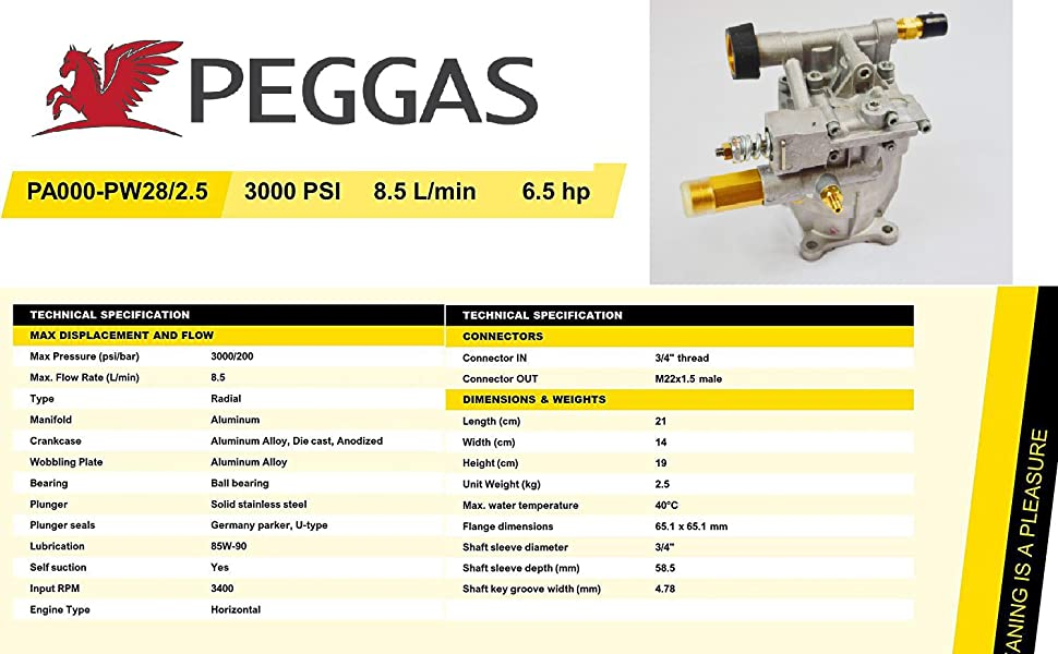 "Pressure Washer, Pump, Horizontal, PEGGAS, NEW, 3/4"", M22, 3000 PSI, 2.5 GPM, Honda, Homelite"