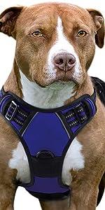 No Pull Dog Harness-Blue