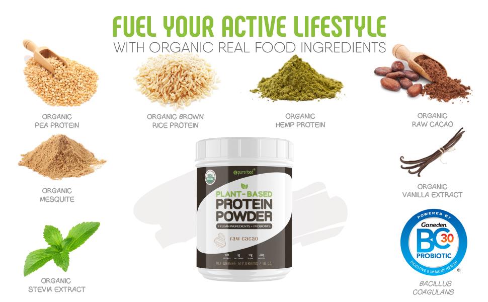Pure Food Plant-based Protein Powder Ingredients