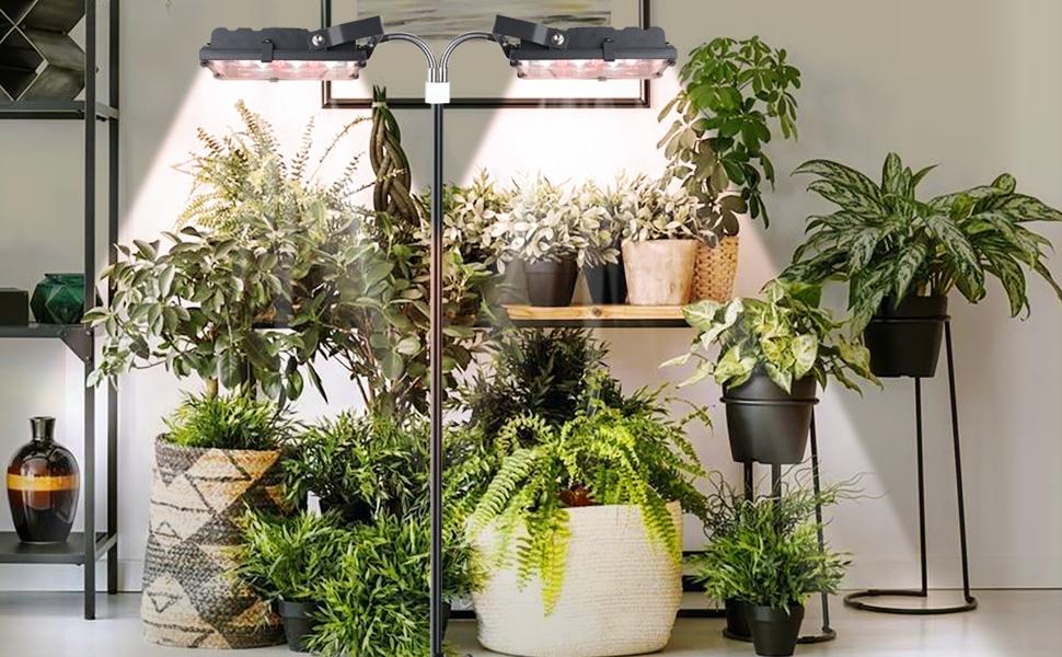 ACKE floor plant light 70W
