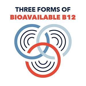 Three forms of B12