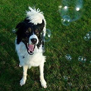 scented bubbles