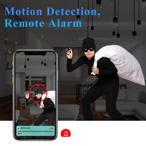 Motion Detection, Remote Alarm