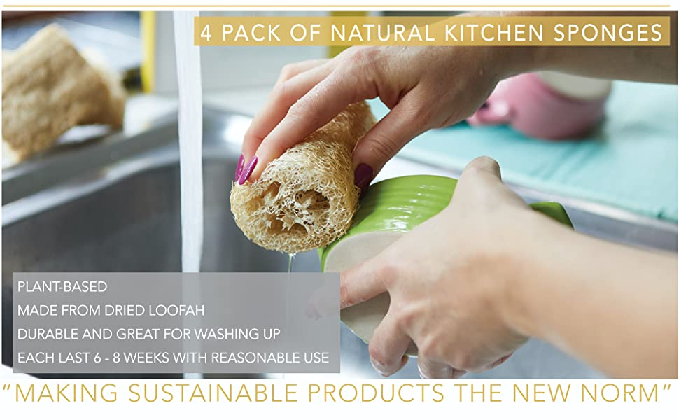 kitchen sponge washing up natural cleaning clean home green plastic free sustainable