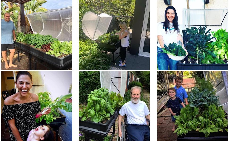 Vegepod, Customers, Raised Garden Beds