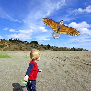 kites for beginner