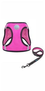 PHOEPET Step-in Harness & Leash Set