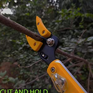 cut and hold