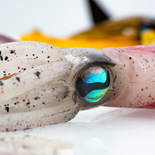 Curtom 3D Squid Eye