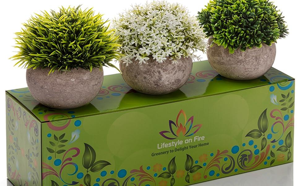 Amazon Com Artificial Boxwood Grass Plants Gorgeous Fake