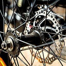 Dual disc brakes