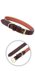 Premium Canvas Leather Dog Collar
