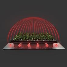 SUNCORE Seedling Heat Mat Indoor Home Gardening Hydroponic Germination Propagation Cloning