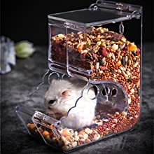 water dispenser for guinea pig guinea pig food bowl guinea pig shampoo pig feeder guinea pigs