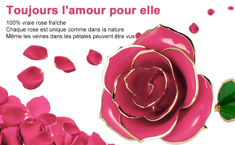 Gomyhom Rose 24K Rose Plaqu/é Or Mariage Anniversaire Violet + Supporter /él/égante Fleur Romantique /éternelle avec Bo/îte Cadeau de Id/éal pour Amie Saint Valentin F/ête des M/ères
