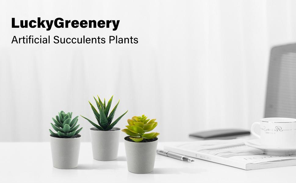 Artificial Succulents Set