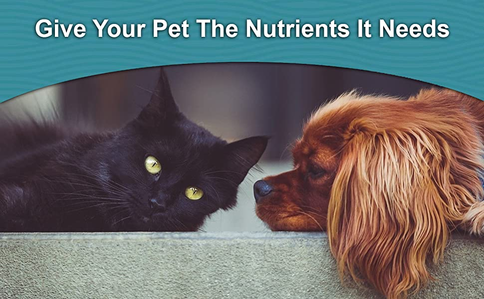 Pure Ocean Nutrients Salmon Oil For Pets Cats Dogs