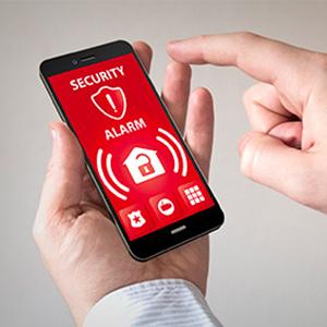 Alarmanlage, Falke Kamera, Funk, Wifi, WLAN, Kamera, Sicherheit, Videoüberwachung