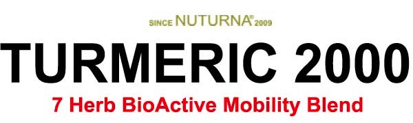 turmeric 2000 inflammatory support