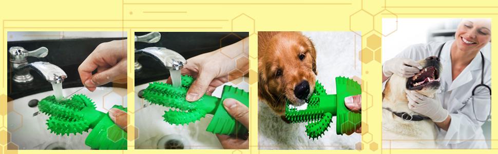 Interactive Bite Bone Toys