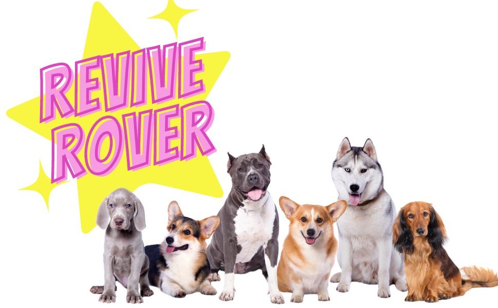 revive rover, dog supplement, dog vitamins, healthy dog, buddy budder, bark bistro, hip amp; supplement