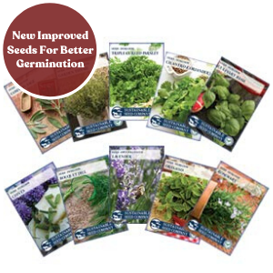10 Unique Varieties Of Culinary Herbs