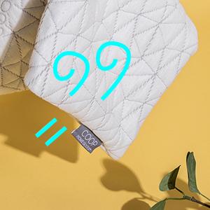 Coop Home Goods Original Pillowcase