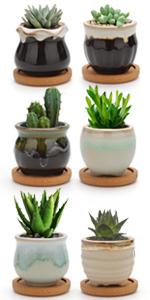 Minni Pots (Click Here)