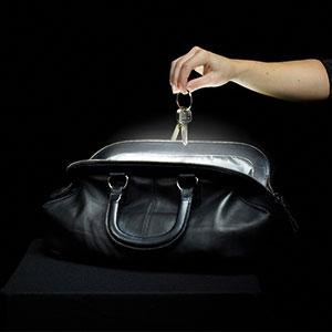 hand bag light