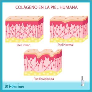 Colageno Le pommiere serum ojos patas gallo arrugas contorno reduce hidrata Lineas expresión bolsas