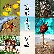 Land Sea Air Theme