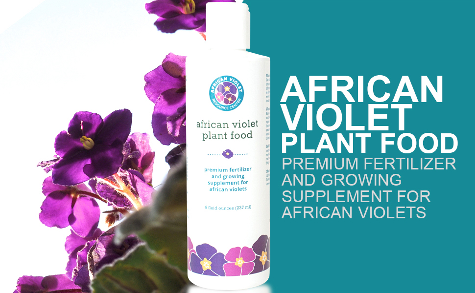 african violet plant food, plant food, african violet, fertilizer, growing supplement