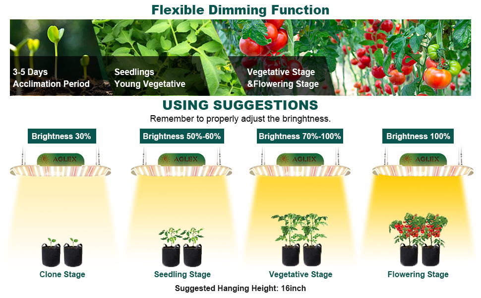 grow light with dimmer