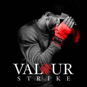 Valour Strike Kickboxen Beinsch/ützer MMA Schienbeinschoner Muay Thai Schienbeinschutz Kampfsport Kickboxen Schienbeinsch/ützer Boxen Trittschutz Shin Bein Pro Fu/ß Pads
