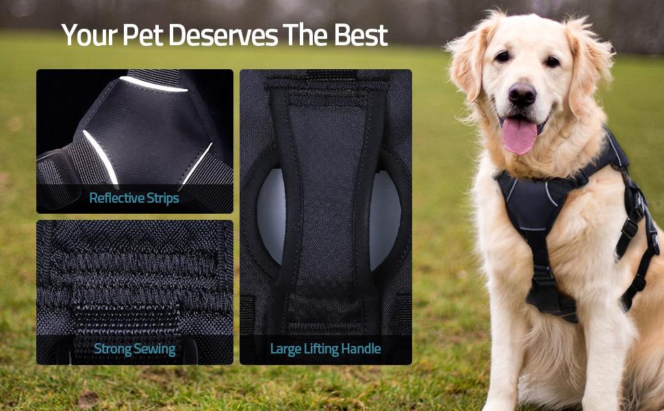 extra large dog harness